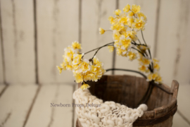 Mooie volle bloesem tak (geel)