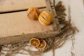 Gedroogde sinaasappels (NIEUW)