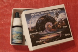 Doos Healing Ocean Remedies (4 flesjes)