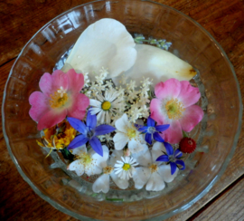 Flowerspirit