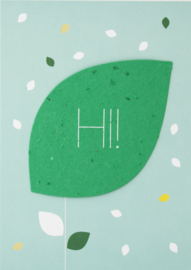 Send & Grow card -hi!