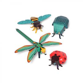 Pukaca - Insecten