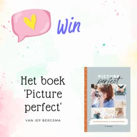 Win het boek 'Picture perfect'