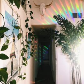Happy Windows - Rainbowmaker Amethyst