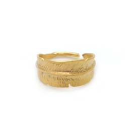 Silver luck freedom ring - gold