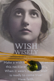 Wish wisely park