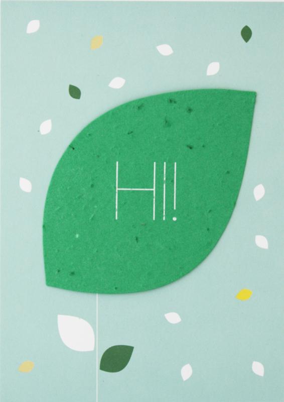 Send & Grow card -hi!
