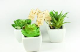Houten planten label op stokje - vanaf 10 stuks