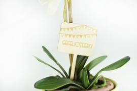 Planten label - groot - per stuk