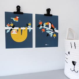 Posterset jungle  kamer toekan + luiaard - donkerblauw