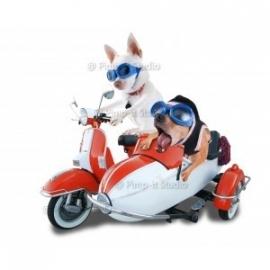 Strijkapplicatie coole honden