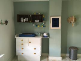 Babykamer van Lot met poster en dierenkop olifant