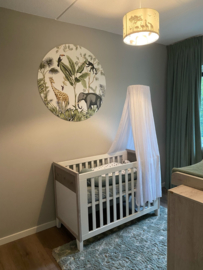 Babykamer van Annemarijn