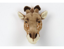Dierenkop Giraffe - Wild and Soft