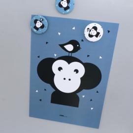 Poster apenkop babykamer - jeans blauw