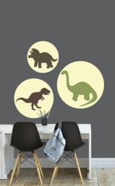 Behangcirkel set kinderkamer - dino dinosaurus