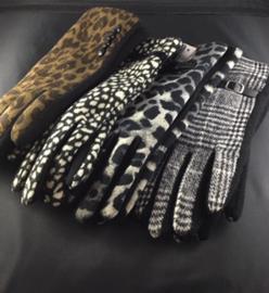 Handschoen l'hiver