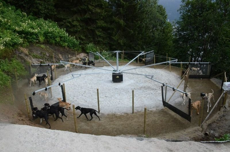 Honden trainingsmolen SIGMA 4 drijfhekken 10 tot 14 meter