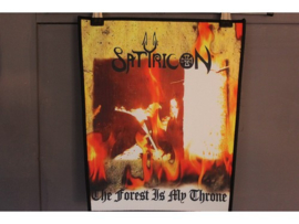 SATYRICON - THE FOREST IS MY THRONE