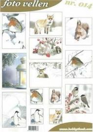 Fotovellen Winter 014