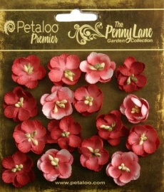 Petaloo Penny Lane forget me not x16 antique red 1837-050