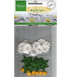 RB2225 Do It Yourself Daisies