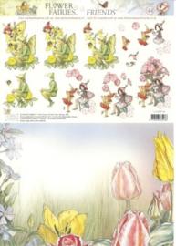 Studio Light - Flower Fairies - Combiff44