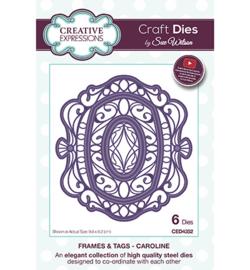 Creative Expressions - CED4352 - Caroline