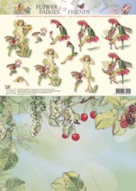 Studio Light - Flower Fairies - Combiff43