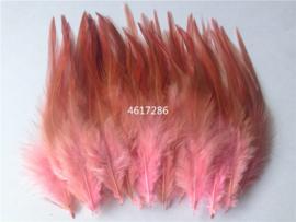 Veren roze 46.17.268