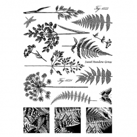 Crafty Individuals CI-207 Ferns and Grasses