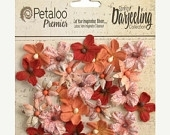 Petaloo 24 Small Paprika Wild Blossoms 1481-317