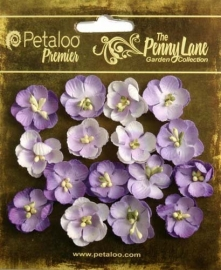 Petaloo Penny Lane forget me not x16 soft lavender 1837-057