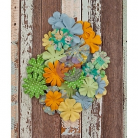 574185 Fleurs de prima 36 flower