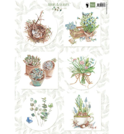 Marianne Design EWK1254 - Herbs & leaves 1