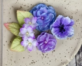 567118 Joulee Violet