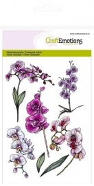 CraftEmotions 130501/1243 clearstamps A6 - orchidee takken