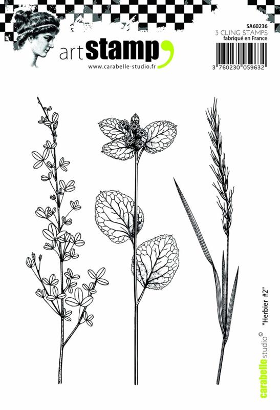 Carabelle Studio SA60236 A6 Stamp Set - Herbier #2