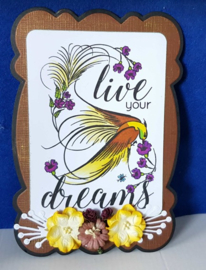 Live your Dreams - 3
