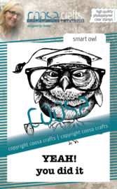 COOSA Crafts Clear Stamps #18 - Smart Owl A7