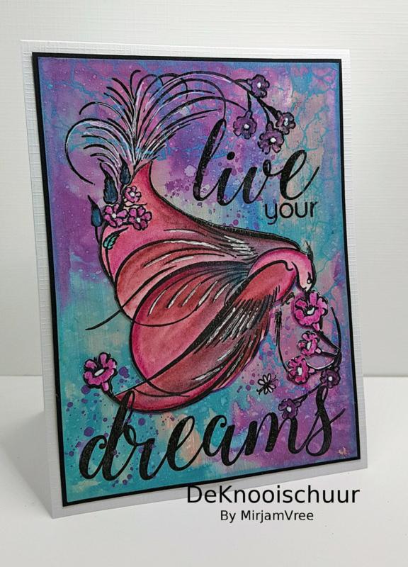 Live your Dreams - 1
