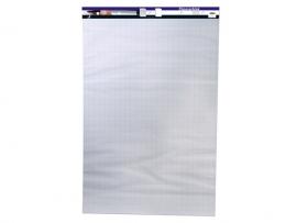 Flipover blok blanco/Ruit 65x 100 50 vel