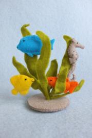 Waterplantjes met vissen en zeepaardje