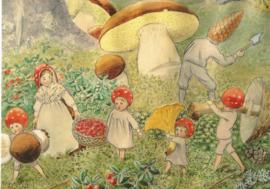 De kabouterkinderen - paddenstoelen plukken