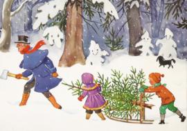 Peter en Lotte halen een spar uit het bos