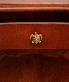 Tommy Turtle Knob