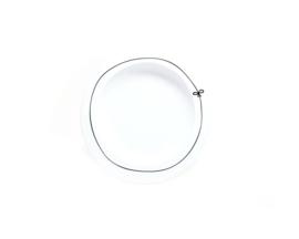 Dinner Plate Bow