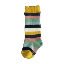Knee sock Stripes