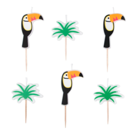 Kaarsjes Toucan