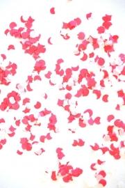 Confetti Roze & Wit